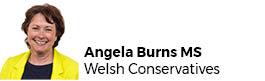 Angela Burns AM