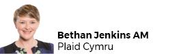 Bethan Jenkins AM