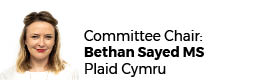 Bethan Sayed AM - Chair