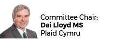 Dai lloyd AM (Chair)
