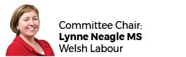 Lynne Neagle AM (Chair)